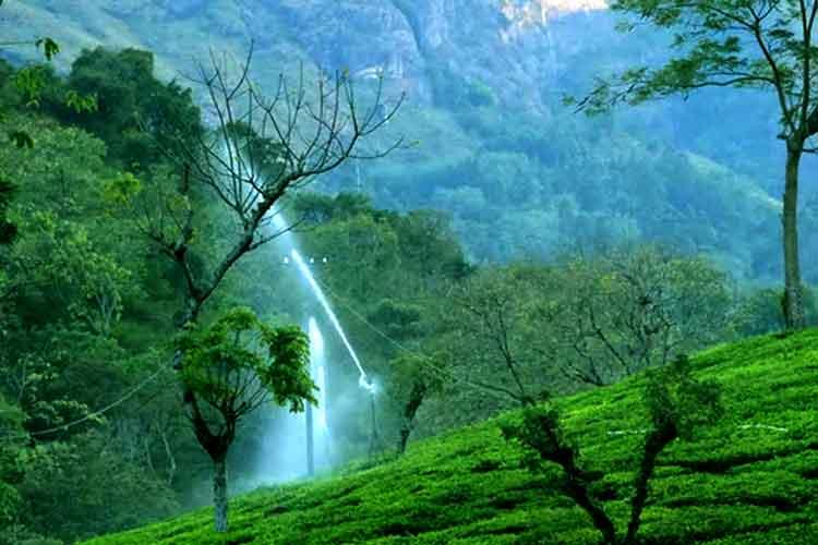 Ooty Mysore Tour