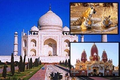 Agra Ranthambore Jaipur
